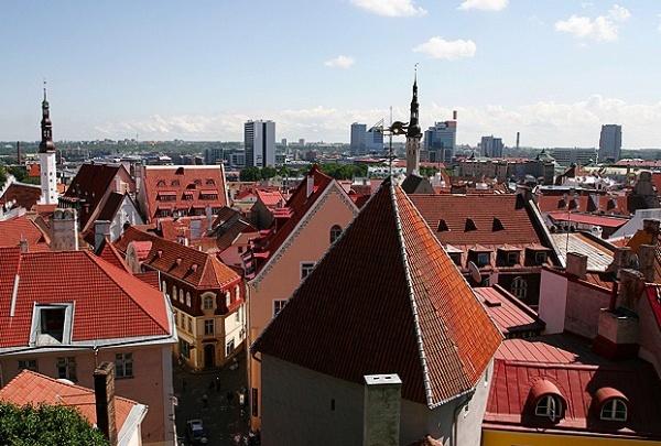 Ростов проиграл Таллину право быть столицей «Тотального диктанта»