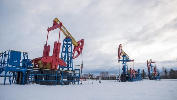 Пермские нефтяники получили новый участок в Удмуртии по результатам аукциона