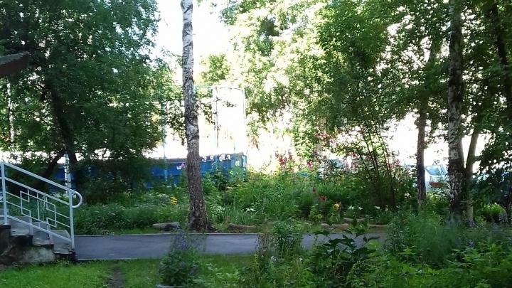 «Машины ставят где попало»: жители дома в центре переругались из-за парковки вместо деревьев