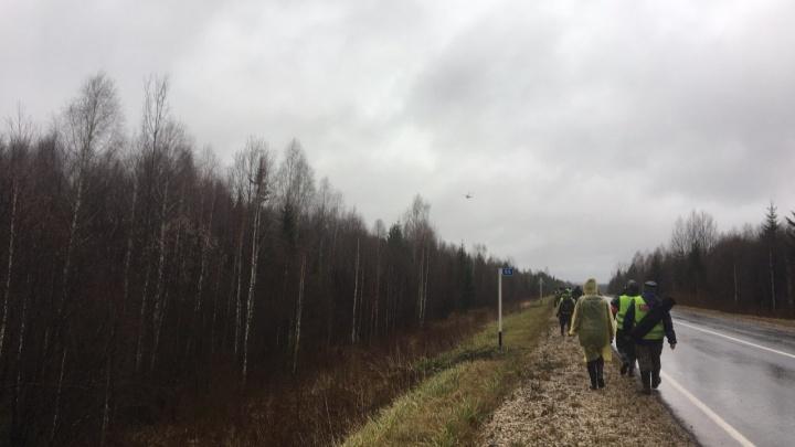 «Поиск: лес. Ищем оранжевый самолёт». Как я ходила волонтером с отрядом имени Ирины Бухановой