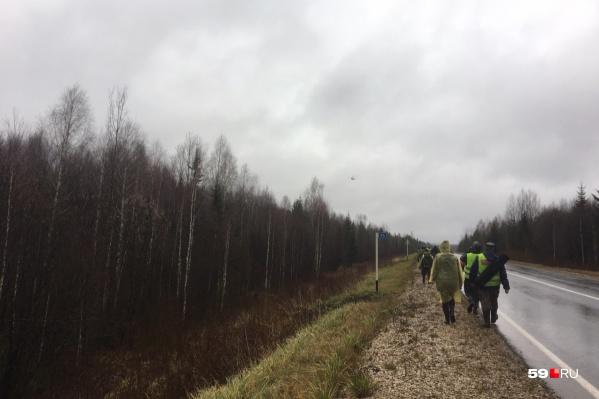 Пока над лесом кружит вертолет, у волонтеров другая задача — искать на земле. Фото сделано во время перехода с одного участка поисков на другой