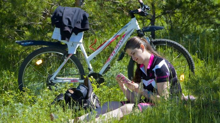 Два колеса — через леса: челябинцам предложили сделать новую велодорожку