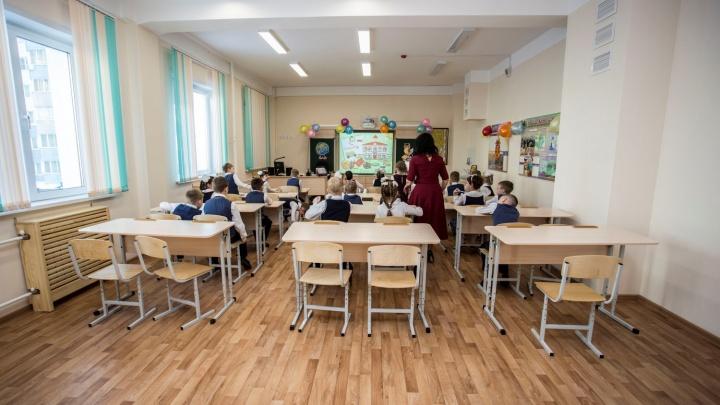 «Хотят выглядеть лучше»: 36 новосибирских школ обвинили в натягивании оценок за контрольные