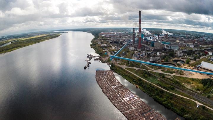 АЦБК вошел в тройку лидеров среди российских компаний по затратам на защиту природы