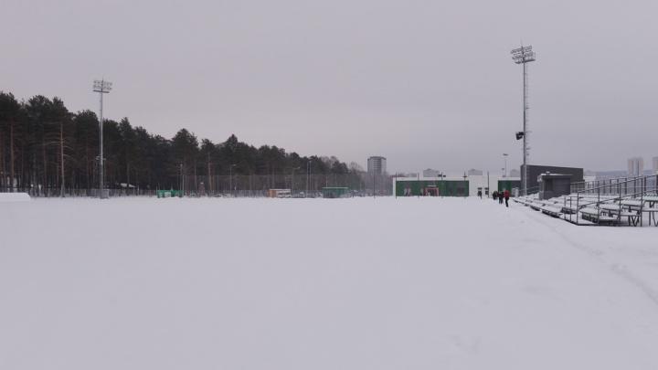 Главное — заменить траву на искусственный газон: в Екатеринбурге три стадиона адаптируют после ЧМ