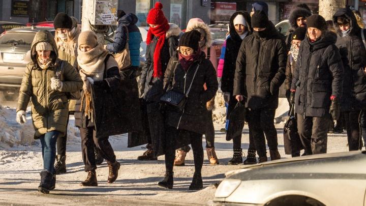 «Будет мощная волна холода»: новосибирцев ждут по-настоящему зимние выходные