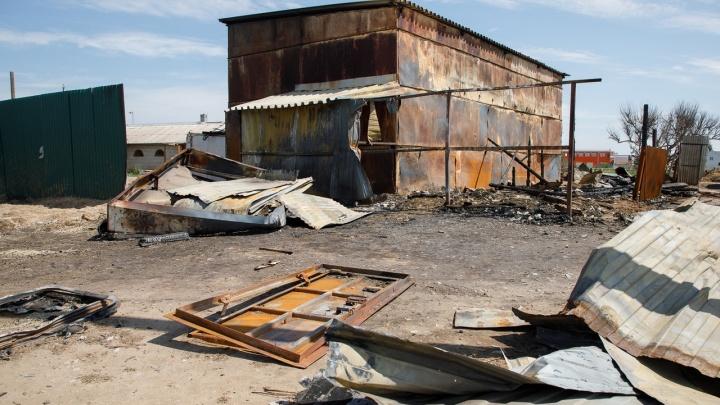 Проверку по факту гибели пяти лошадей и пони на пожаре в Волжском взял на контроль генерал Кравченко