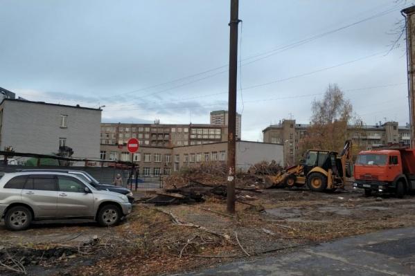 Чтобы расчистить стройплощадку, подрядчик снёс 34 дерева. Из них 31 дерево было признано аварийным
