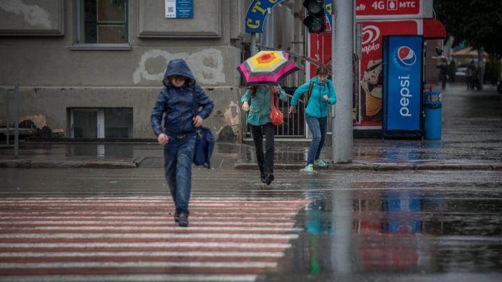 В Новосибирск возвращаются плюсовые температуры и дождь