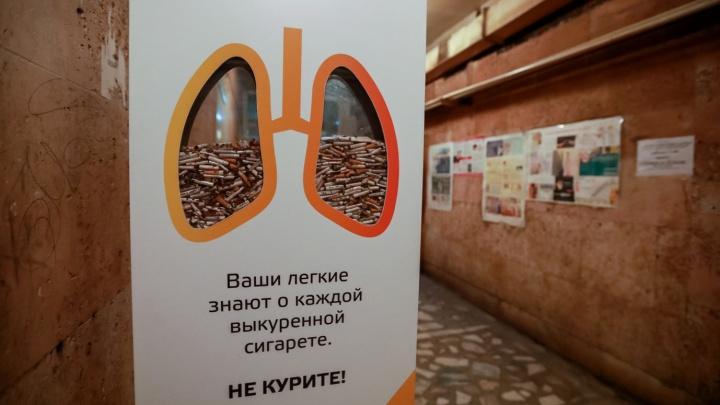Красноярск наводнили нелегальные сигареты. Их объем стремительно растет