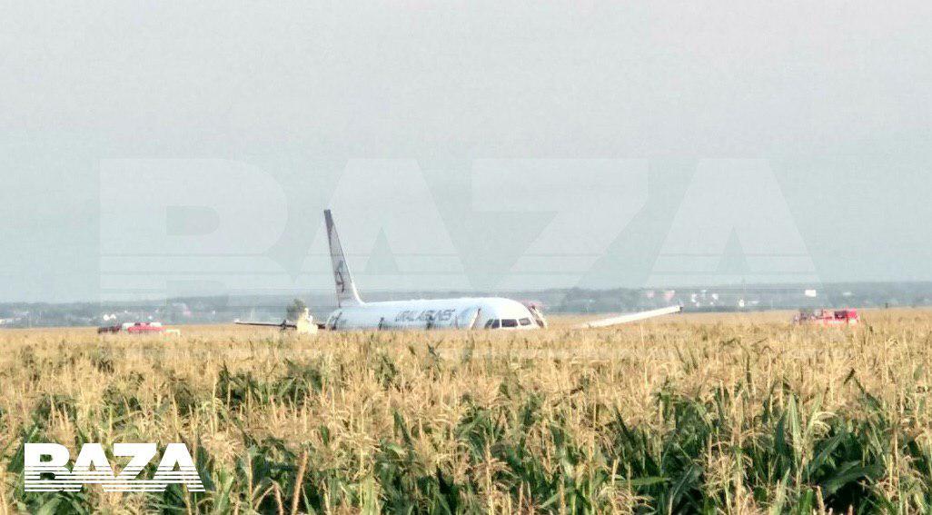 Самолет «Уральских авиалиний» совершил экстренную посадку в поле в Подмосковье