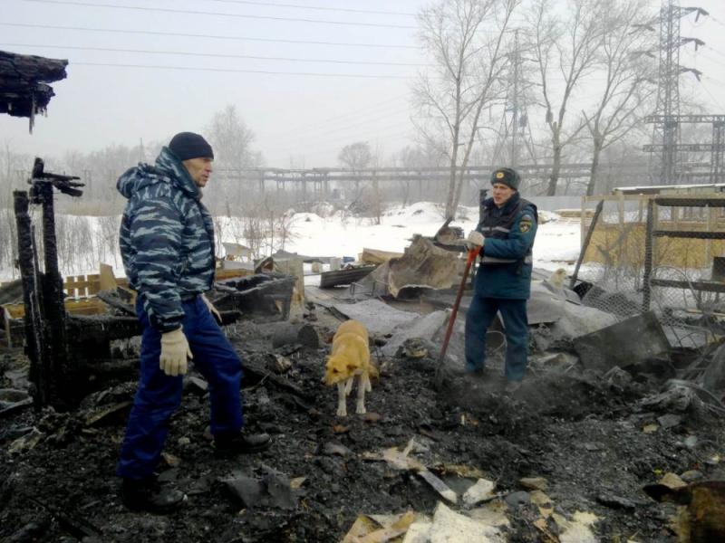 В огне погибли два питомца приюта