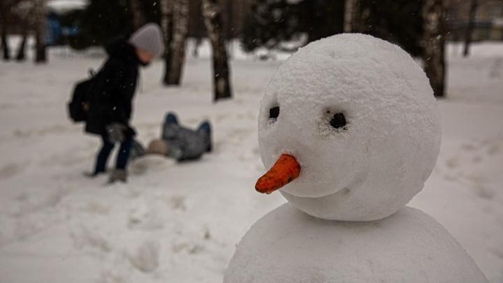 Февраль вжарил: новосибирцы налепили снеговиков в парках и утонули в грязевых потоках