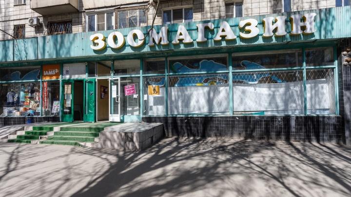 «Не стучите, они вам не откроют»: рассказываем о жизни старейшего зоомагазина Волгограда