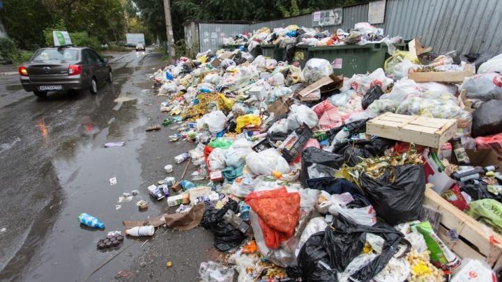«Нас сделали крайними»: за горы мусора во дворах начали штрафовать коммунальщиков