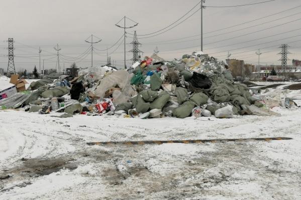 Под окнами тюменцев образовались огромные горы мусора. За это управляющей компании могут выписать огромный штраф