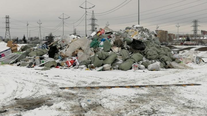 Управляющая компания повесила камеры, чтобы следить за тюменцами, выбрасывающими строительный мусор