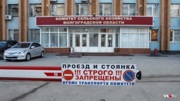 «Ведётся проверка»: прокуратура разбирается с парковкой вице-губернатора в центре Волгограда