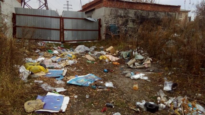 «Никто не хочет платить за вывоз»: рядом с рекой Каменкой появилась новая свалка