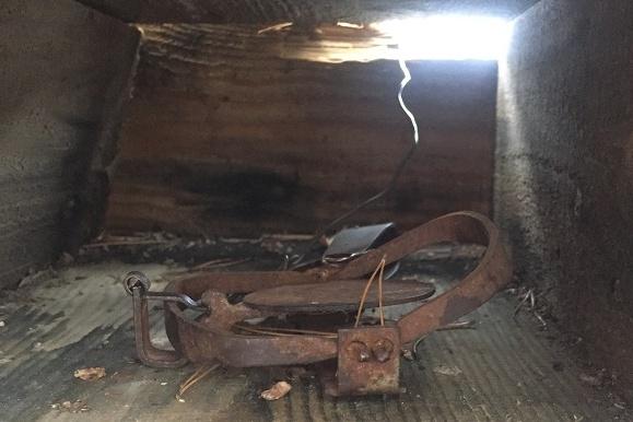Инспекторы нашли жестокие капканы