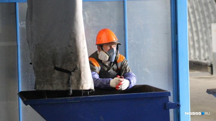 Брикеты мусора и довольные вороны: в Омске открыли мусороперерабатывающий завод