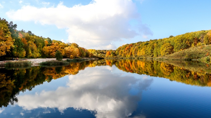 Вокруг одно золото: гуляем по осеннему«Щелоковскому хутору»