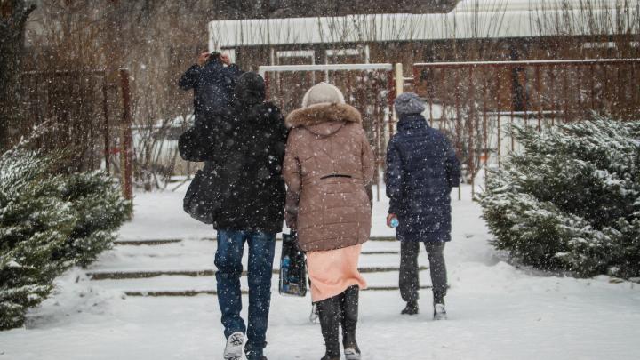 Мороз и солнце: какая погода ждет ростовчан на рабочей неделе
