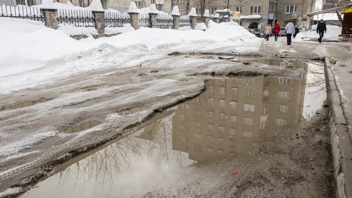 Плюс в декабре: Новосибирскую область накроет аномальным теплом