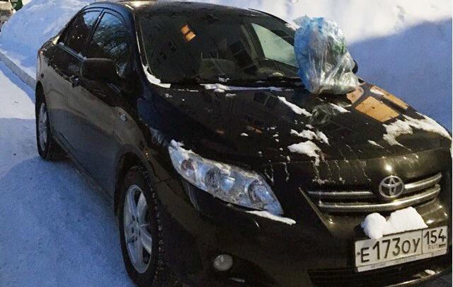 «Я паркуюсь как чудак»: Toyota получила по капоту
