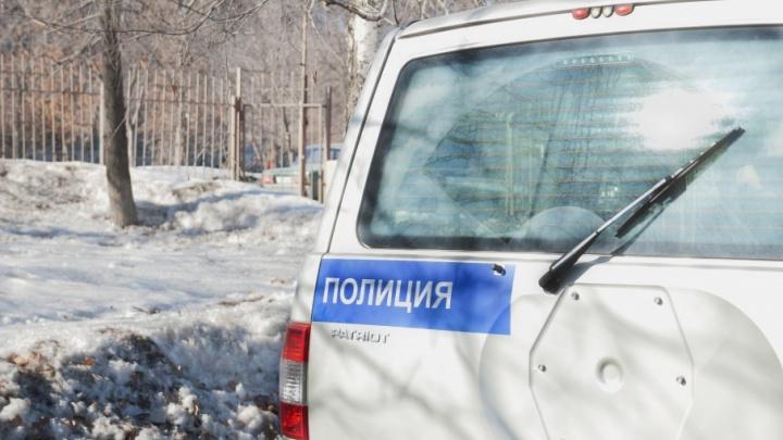 Друг сына взял покататься: полицейские вернули курганке угнанную машину