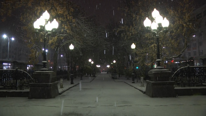 Смотреть только под пледом: в Екатеринбурге прошел снегопад, публикуем холодные фото читателей E1.RU