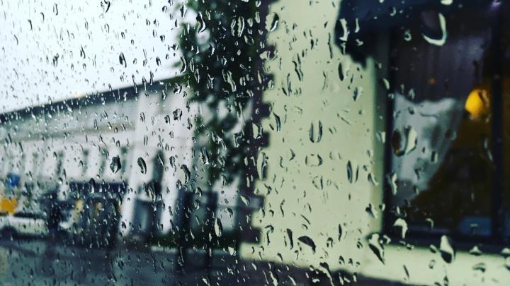 Дожди и потепление: рассказываем о погоде в Прикамье на выходные