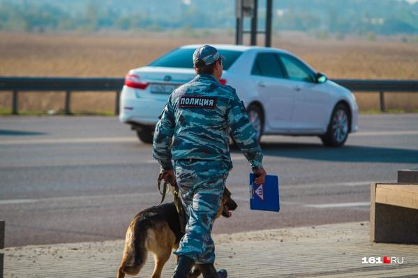 Полицейские задержали дачного вора