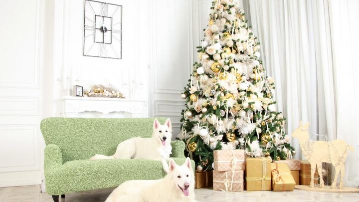 Красивый наряд на Новый год — это не только о людях: как добавить дому уют и праздничное настроение