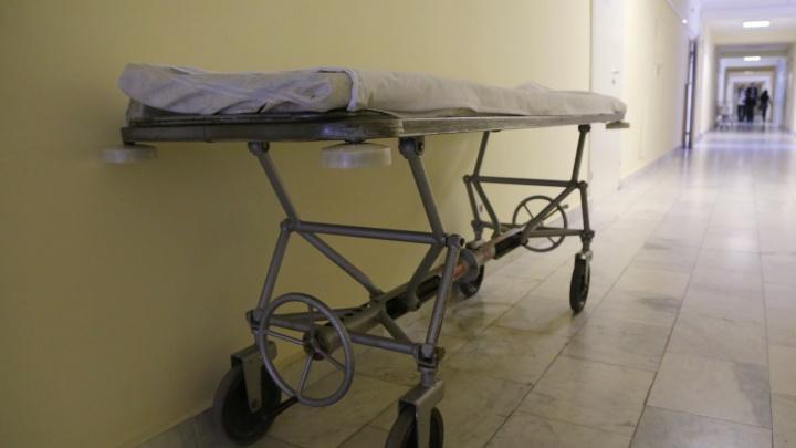 В больнице Ревды от пневмонии скончалась 8-летняя девочка