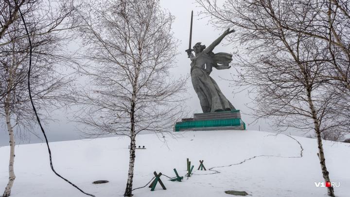 Волгоградский общественник расскажет президенту о сравнении Мамаева кургана с горой мусора