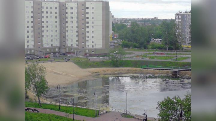 «Будем спасать»: пруд «Девичьи слёзы» очистят от водорослей и наполнят водой