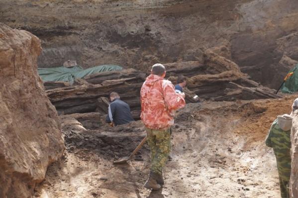 Участки передадут археологам