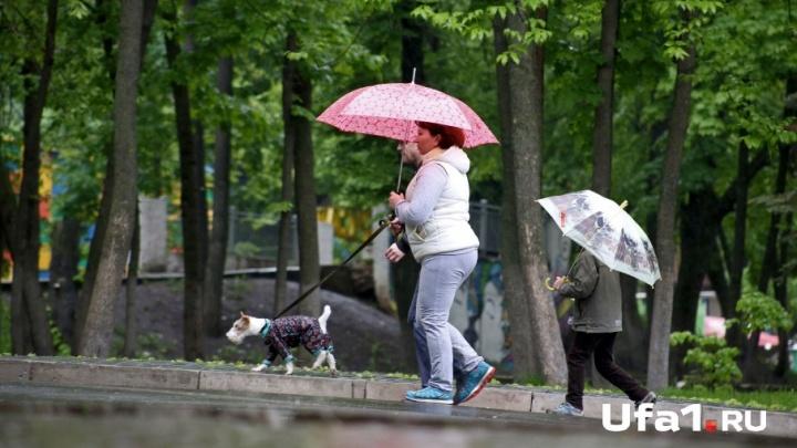 На Башкирию надвигаются грозы, град и штормовой ветер