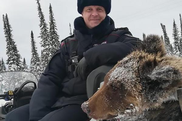 Медведя подстрелили полицейские