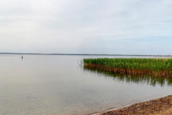"""«Селище """"Клещино""""» находится рядом с Плещеевым озером"""