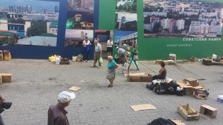 «За эту свалку штрафуют нас»: сотрудники Центрального рынка в Волгограде убирают за дачниками