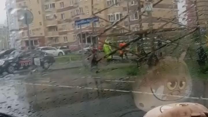 Рабочие укладывали асфальт под дождем на улице Ростовцева