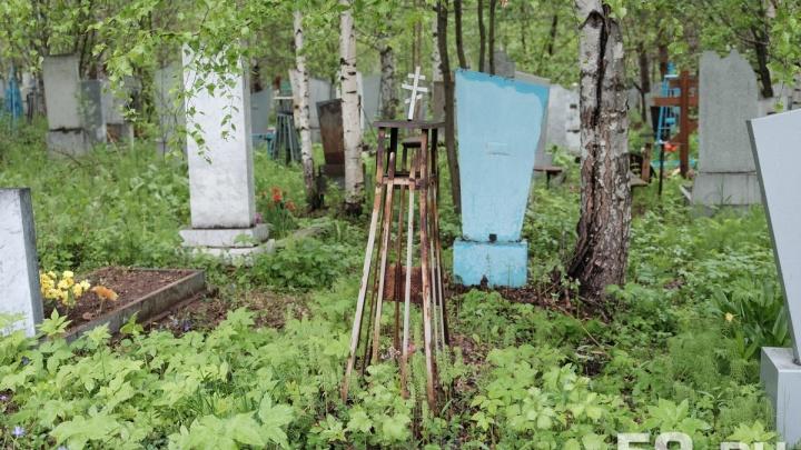 Расширят на 30 гектаров: в Перми в 2019 году реконструируют самое большое городское кладбище