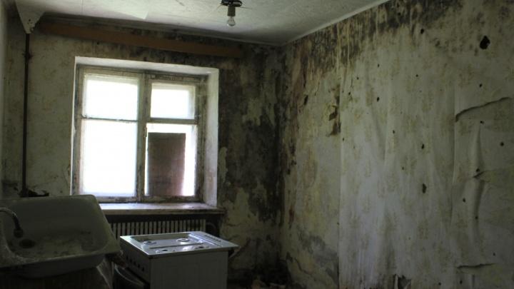 Эпидемиологи признали дом с плесенью пригодным для жизни. Туда переселяют людей из аварийного жилья