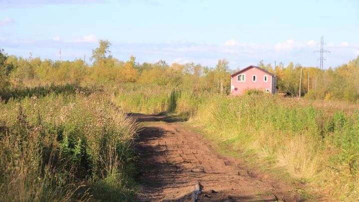 «Вред лесному фонду»: как власти Поморья неудачно выбрали землю под жилье для многодетных семей