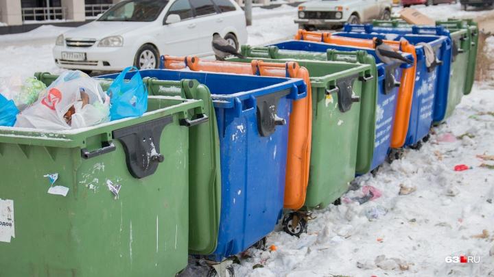 Сухой и мокрый: в Самарской области проведут эксперимент по раздельному сбору мусора