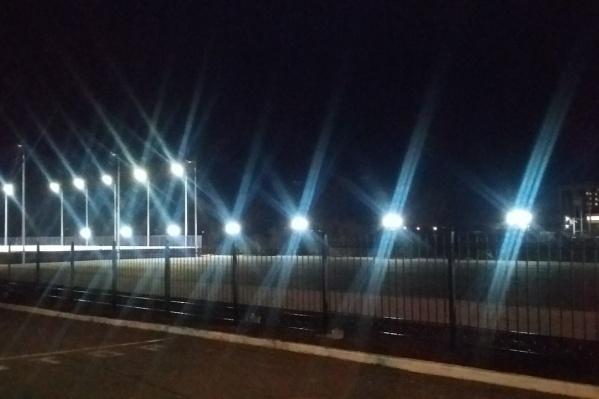 Фотографией нового освещения в парке Александр Васильев поделился накануне