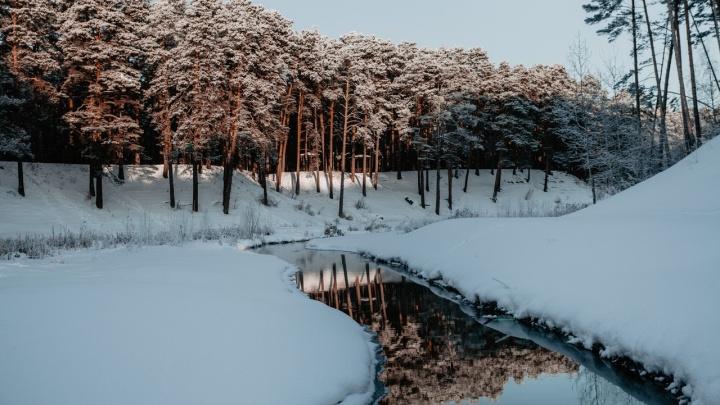 Какой будет середина зимы в Тюмени? Краткий прогноз погоды до конца января