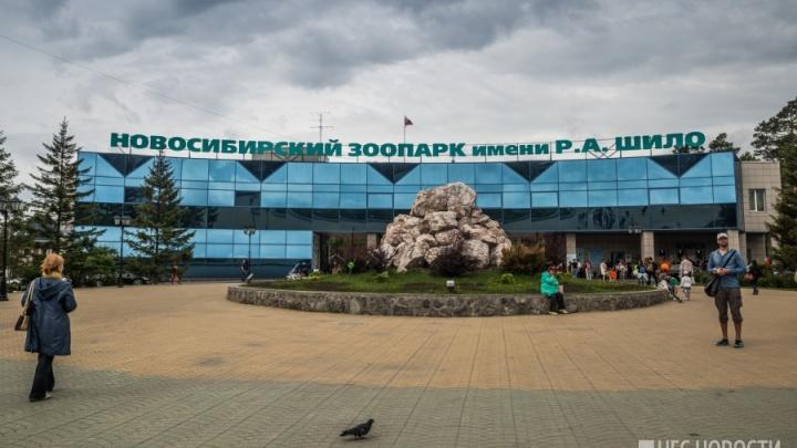 Новосибирский зоопарк возьмёт в кредит 30 миллионов
